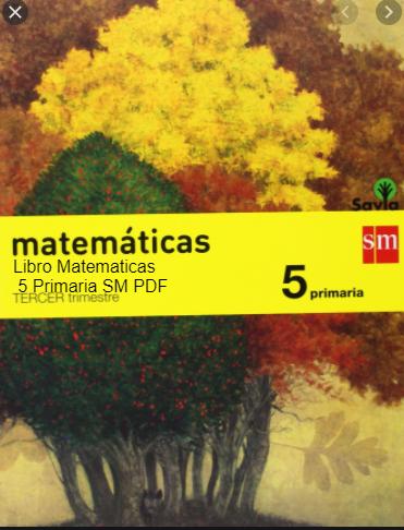 Libro Matematicas 5 Primaria SM SAVIA PDF